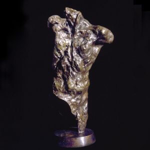 Messenger a life size male bronze figurative torso by sculptor Andrew DeVries