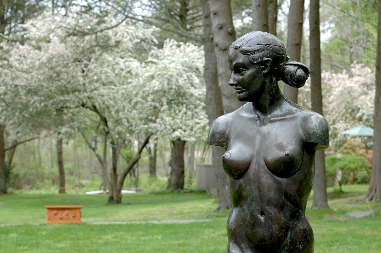 Venus Torso bronze life size nude female torso by Andrew DeVries